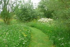 A simple mown path through a meadow. Soothing to the eye, the feet and the soul