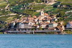 http://www.cgn02.ch/ferphoto/Ferro_Entree.html Village St-Saphorin Switzerland with Train SBB at to Lausanne. Photo jvernet@bluewin.ch