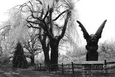 Gargoyle Photography, Black and White Photography, Surreal Dark Gothic Gargoyle, Spooky Haunting Eerie Tree Landscape, Gothic Gargoyle Photo Black And White Tree, Black And White Landscape, Dark Gothic, Gothic Art, Gothic Gargoyles, Gothic Photography, Spooky Trees, Landscape Photographers, Black And White Photography