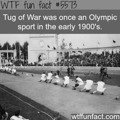 Tug of War in the Olympics - Did NOT Know That! ~WTF? fun facts