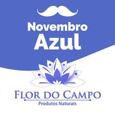 Perfil facebook Flor do Campo