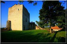 Après avoir accueilli un seigneur puis des soldats, le château de Morestel dans le Nord-Isère durant tout l'été garde des tableaux de peintres locaux. Ce ne sont plus des assaillants qui tentent de le conquérir mais des touristes et des amateurs d'art.