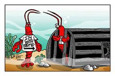 Cartoon Lobster | Lobster Stickers - I'm With Stupid - Cartoon Gifts by Entertain Ya ...