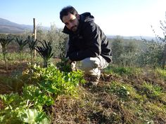 Alessio, of Km Zero Tours in the garden. Experiential Travel, Tuscany, Italian Cooking Classes, Farm to Table Experiences, Eco tours. Learn from locals. Italy