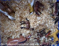 horse sensory bin, just need the bedding, could also use oatmeal Sensory Tubs, Sensory Boxes, Baby Sensory, Sensory Activities, Sensory Play, Wild West Crafts, Wild West Theme, Farm Theme, Special Needs Kids