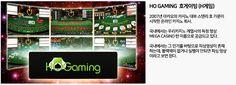 [바카라영상분석] 호게이밍(HO Gaming, 호게임)