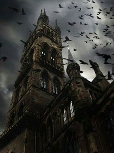 This is an example of Gothic architecture. The building is very dark and kind of gloomy and is very pointy. I got this image off pinterest.
