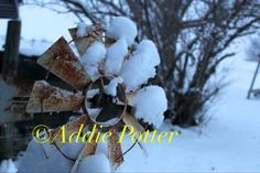 """This original photograph, """"Winter Winds"""", is now available for order and framing. DM me for details!"""