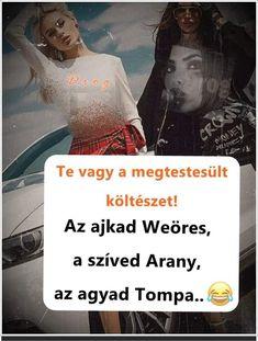 Fan, Memes, Movie Posters, Meme, Film Poster, Hand Fan, Fans, Billboard, Film Posters