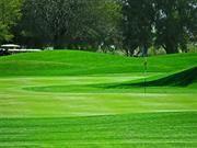 San Miguel Golf Course  Eloy, Arizona  February 2013  Kerri, Chuck, Derl, Dolores
