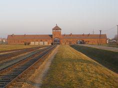 Birkenau, November 2011