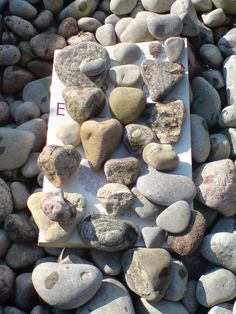 Sitting on the shore of Lake Simcoe, was a beach full of heart rocks!