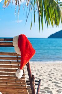 Picture of Red Santa's hat hanging on palm tree at the tropical beach. Christmas in tropical climate concept stock photo, images and stock photography.