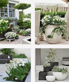 białe kwiaty na tarasie,balkon i taras z białymi i zielonymi roślinami,białe white flowers on the terrace balcony and terrace with white and green plants white