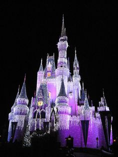 Disney World at Christmas.  There's nothing more beautiful.