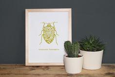 """""""Carpocoris fuscispinus"""" ist ein von Hand gefertigter Siebdruck nach eigenem Motiv  auf fein strukturiertem Aquarellpapier.  www.blaurotgrau.blogspot.de"""