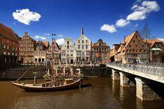 Stint, Lüneburg, Germany