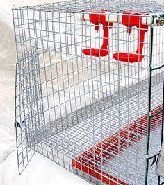 Клетки для кроликов и кур