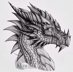 - Another dragon for . Well, that was a kind of interesting experiment. I've started this one around 2006 (or it was I don't remember ), and it got stuck on the pile of unfinished. From time to. Dragon Tattoo Drawing, Small Dragon Tattoos, Dragon Tattoo Designs, Realistic Dragon Drawing, Drawing Art, Fantasy Drawings, Cool Drawings, Cool Dragon Drawings, Dragon Coloring Page