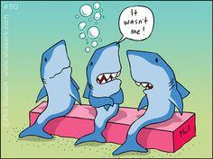 More shaaark!