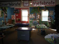 Elementary Classroom Themes | STEM at Benton Elementary | Benton Elementary
