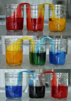 Cool Walking Water Science Experiment for Kids Walking Water experiment (and colour theory/ colour mixing too!)Walking Water experiment (and colour theory/ colour mixing too! Kid Science, Water Science Experiments, Preschool Science, Teaching Science, Science Activities, Activities For Kids, Science Labs, Science Ideas, Educational Activities