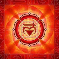 CHAKRA BÁSICO OU RAIZ - NOME SÂNSCRITO MULADHARA - Tem função de conexão com a terra, localizado na base da coluna vertebral, nos liga a energia da terra, se você se sente seguro, firme, forte, parabéns teu chakra raiz esta plenamente aberto. Em equilíbrio proporciona o bem-estar físico, ligação com a terra e vitalidade, nos homens equilibra a sexualidade. Em desarmonia provoca raiva irritação, pânico, desânimo, impotência sexual, constipação e medo de viver.