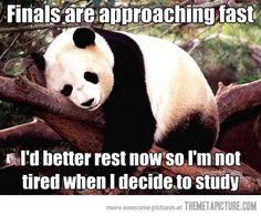 I better rest now…