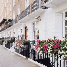 ⭐️ Wrought Iron, Scotland, Places To Go, Stairs, England, Gardening, London, Travel, Home