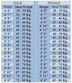 weight chart man koni polycode co