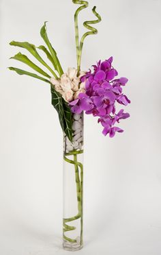 Slim vase with smooth rocks suspended towards the top with the use of the curly bamboo.