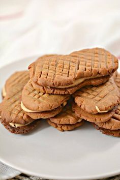 Keto Cookies – Super Yummy Low Carb Copycat Nutter Butter Peanut Butter Cookie Recipe For Ketogenic Diet – Keto Friendly & Beginner – Desserts – Snacks Peanut Butter Fat Bombs, Low Carb Peanut Butter, Chocolate Peanut Butter Cookies, Peanut Butter Cookie Recipe, Chocolate Recipes, Cookie Recipes, Keto Recipes, Keto Desserts, Peanut Cookies