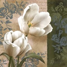 Tulip Fair Prints by Igor Levashov at AllPosters.com