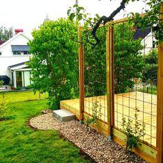 En sån dag! ...ingen sol ...men vi har trädgårdsfixat...#sjösten #clematis #spalje ... nu blir det till att grilla hemmagjorda hamburgare i rostat bröd...sallad å råstekt potatis. Den här tiden är bara så #trädgårdsliv #trädgård #spalje #spaljé #gardentime #garden #sjösten #altan #trädgårdsinspiration #clematis #myhome #minträdgård #mygarden #uteliv #interiorforyou #finahem #nordiskehjem #rabatt #planters Terrace, Arch, Villa, Outdoor Structures, Garden, Sun, Balcony, Longbow, Garten