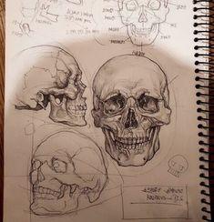 mil Me gusta, 42 comentarios - World of Pencils ( en Instag . Anatomy Sketches, Anatomy Drawing, Drawing Sketches, Drawing Drawing, Human Anatomy Art, Skull Anatomy, Figure Drawing, Drawing Reference, Animal Drawings