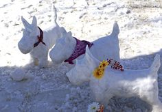 not snowmen, snow westies;  we could make a whole pack!