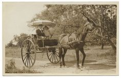 [Young couple sitting in horse-drawn carriage] by SMU Central University Libraries, via Flickr #horse #carrage #surry