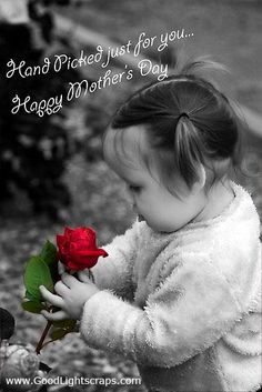 """""""Hand Picked Just For You… Happy MOTHER'S DAY!"""" ___________________________ Reposted by Dr. Veronica Lee, DNP (Depew/Buffalo, NY, US)"""