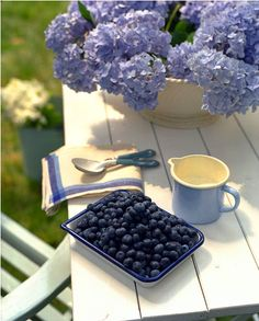 Blueberry color palette
