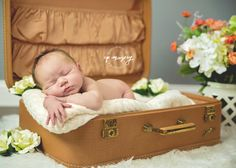 Newborn photography by CPImagery. Little baby girl in a suitcase with flowers!