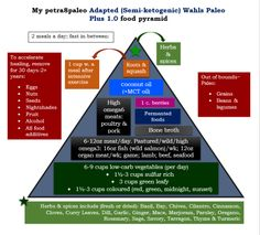 An Adapted (semi-ketogenic) version of the Wahls Paleo Plus   petra8paleo
