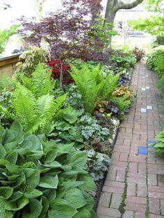 Tim's side garden in Ohio, revisited - Fine Gardening