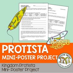 Make mini posters for animal-like, plant-like, and fungus- like protists Biology Lessons, Science Lessons, Life Science, Biology Classroom, Teaching Biology, Science Curriculum, Science Resources, Information Poster, Teacher Notes