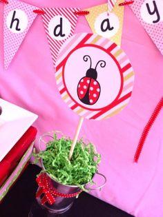 ladybug party centerpiece ideas - Google Search