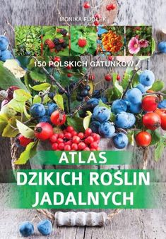 https://www.gandalf.com.pl/b/atlas-dzikich-roslin-jadalnych/