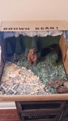 Diorama Brown Bear Black Bear Habitat, Grizzly Bear Habitat, Grizzly Bears, Science Fair Projects, School Projects, Projects For Kids, Science For Kids, Activities For Kids, Animal Habitats