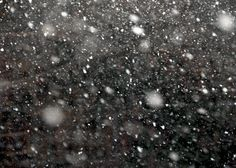 Blizzard 5x7 Photo Fine Art Photography by seeingstars on Etsy