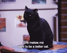 """The Ultimate Dating Guide, As Told By Salem From """"Sabrina The Teenage Witch"""" (via BuzzFeed Community)"""