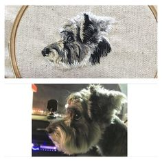#embroidery #embroideryhoop #embroideryart #handmade #handembroidery #stitch #needlework #bordado#ricamo#broderie #dog #pet #animal #刺繍 #手刺繍 #ハンドメイド #犬 #いぬ #わんこ #愛犬 #ペット #ステッチ #手芸 #ふわもこ部 #シュナウザー #schnauzer