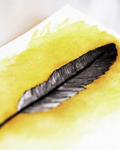 ink and watercolor feathers  by mealisab, via Flickr